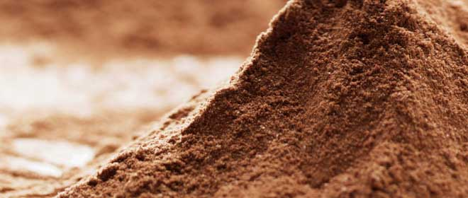 truth-about-protein-powder