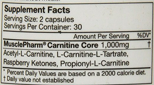 musclepharm-carnitine-core-best-l-carnitine-supplement-ingredients