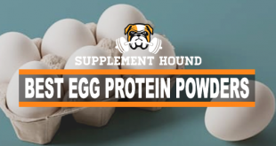 best-egg-protein-POWDER-supplements