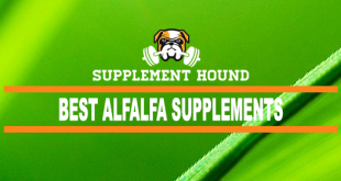 Best Alfalfa Supplements