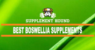 Best Boswellia Supplements