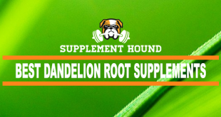 best-Dandelion-Root-supplements