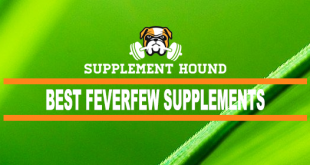 best-Feverfew-supplements