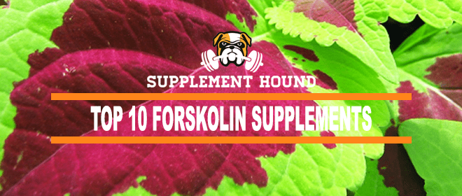 best-Forskolin-supplements