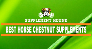 best-Horse-Chestnut-supplements