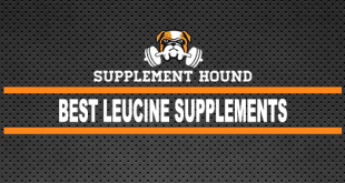 Best Leucine Supplements