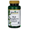 Swanson Red Raspberry Leaves S