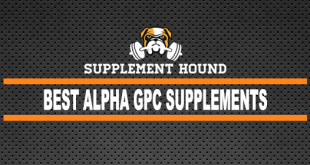 Best Alpha Gpc Supplements