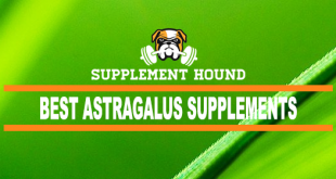 Best Astragalus Supplements