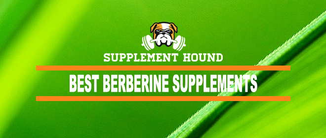 Best Berberine Supplement 2019 10 Best Berberine Supplements for 2019