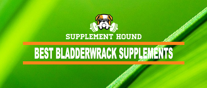 Best Bladderwrack Supplements