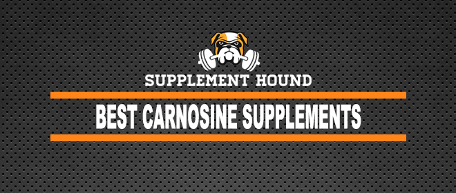Best Carnosine Supplements