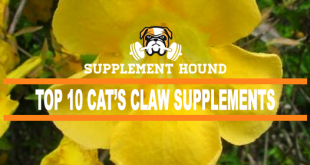 Best Cats Claw Supplements