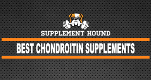 Best Chondroitin Supplements