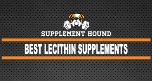 Best Lecithin Supplements