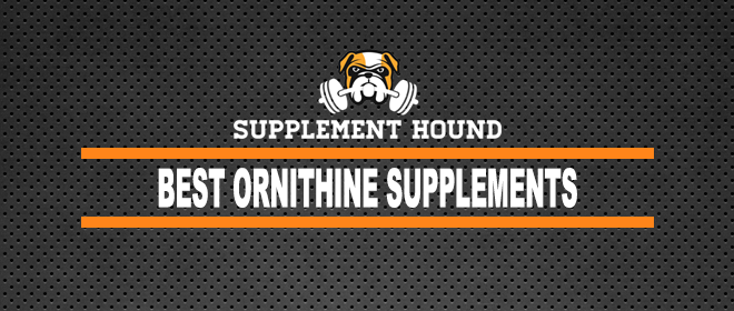 Best Ornithine Supplements