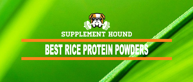 Best Rice Protein Powders