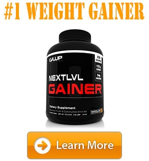 lvlup weight gainer
